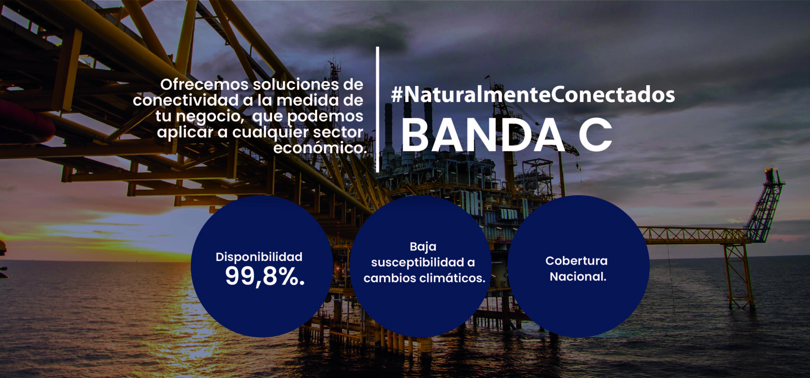 pagina web - BANDAS 2021-01